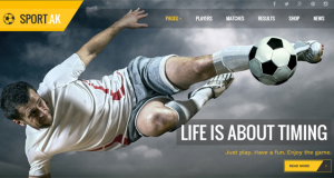 10 + Outstanding Premium WordPress Sports Themes