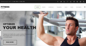 10 + Striking Premium Gym WordPress Themes