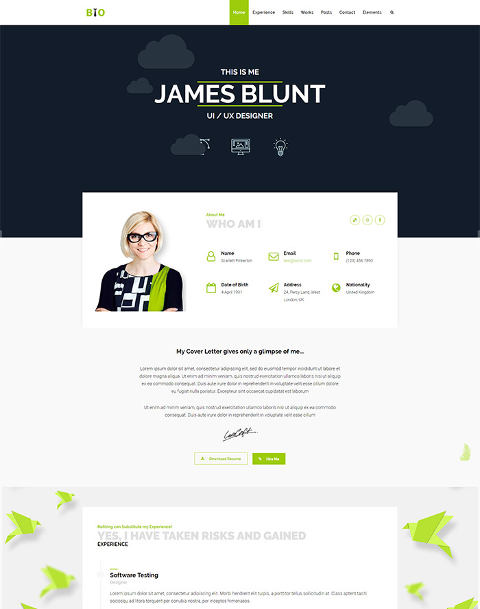 Resume One Page personal themes