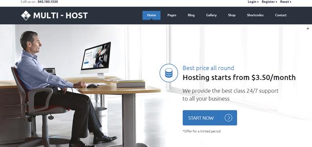 Web Hosting Theme – The Best Ever Multi Host!