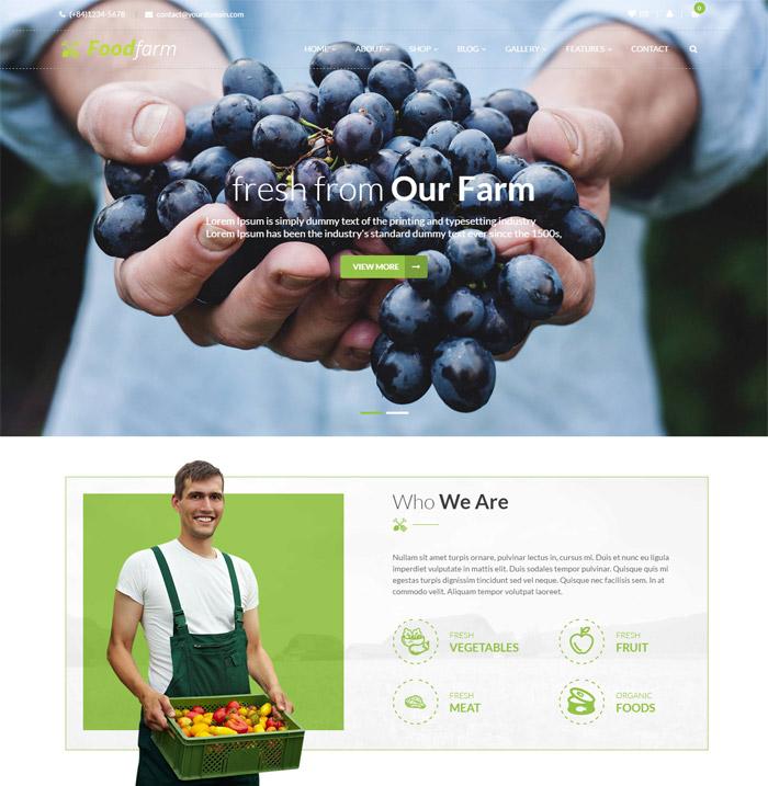 retailing FoodFarm – WordPress Theme