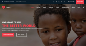 Remarkable Premium WordPress Non-Profit Themes
