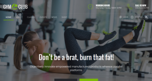 10+ Best Gym and Fitness Themes