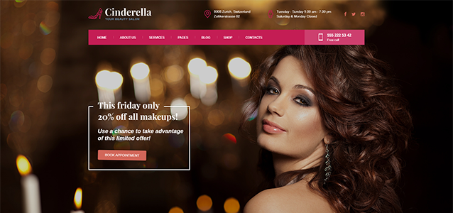 Beauty WordPress themes covering the entire segment